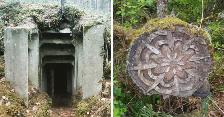 15 alkalom, mikor az emberek meglehetősen furcsa, sőt néha egyenesen ijesztő dolgokat találtak az erdőben