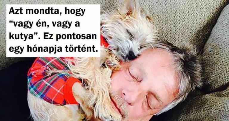 """18 édesapa, akik mindig azt nyilatkozták: """"A háznál soha nem lesz kutya!"""""""