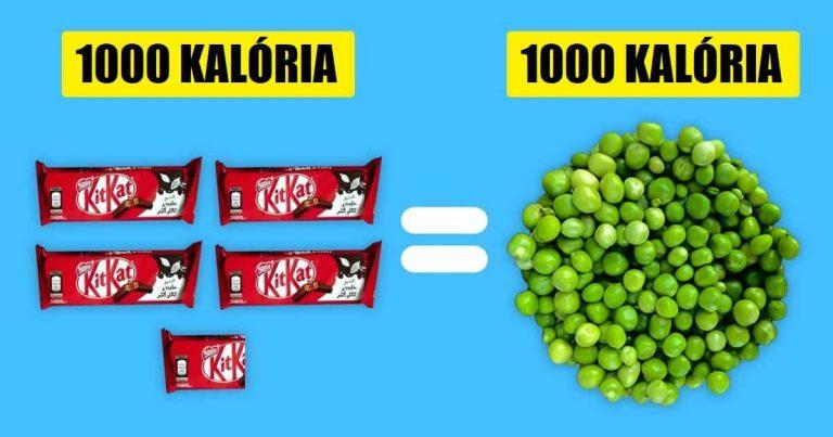 Hogyan néz ki 1000 kalória a különböző ételekben